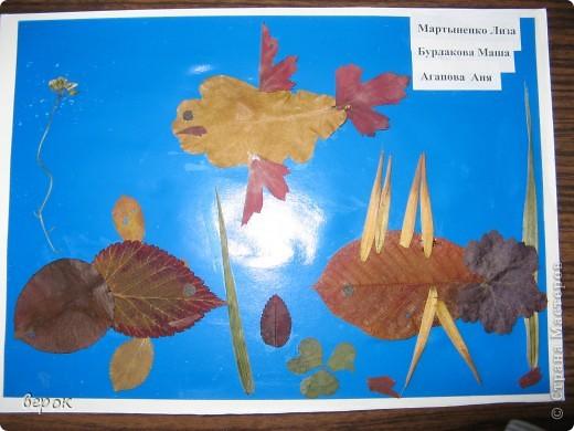 Эти работы выполнили детки 5-8ми лет.Им очень понравилось работать с таким материалом. фото 3