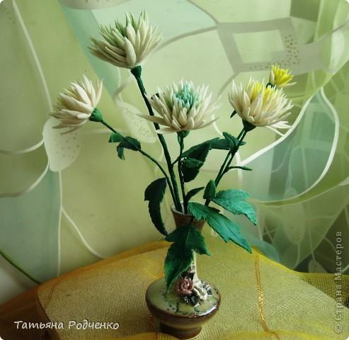 Хотела слепить астры, а получились хризантемы ))) фото 3
