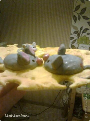 К котам положено и мышей иметь! фото 2