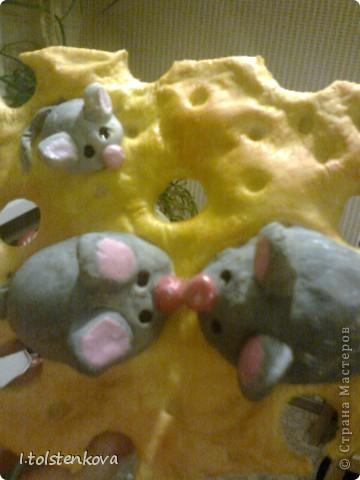 К котам положено и мышей иметь! фото 3
