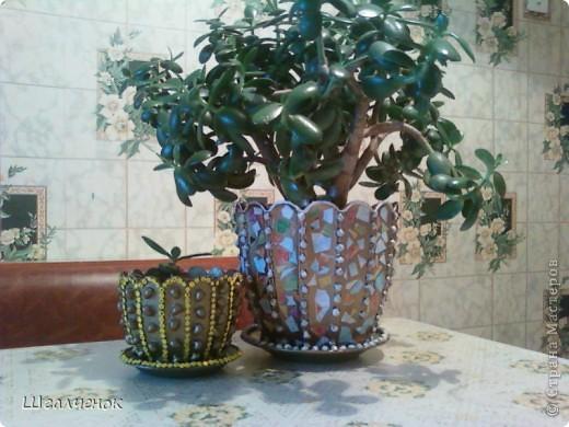 А вот и новые горшочки под цветочки. фото 1
