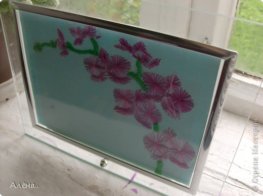 Любимые орхидеи.. фото 2