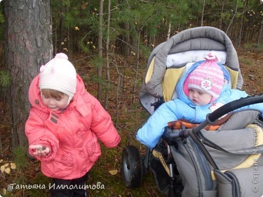 Пока нет дождика,решили прогуляться по лесу.Вернее это огороження территория стихийного парка фото 14