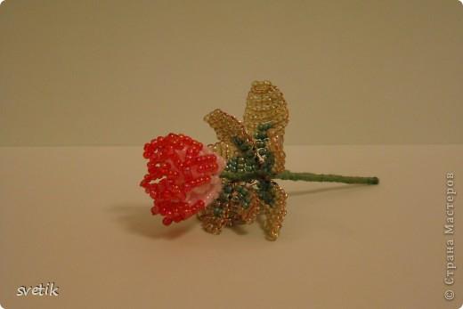 Такой чудо- цветок сделала дочка. Как вы думаете какой? фото 2