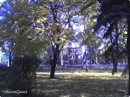 Конец сентября - о наступлении осени видно только по цвету неба. Может наша осень синяя? фото 15