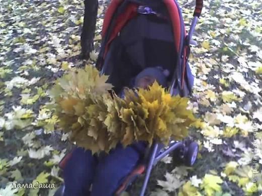 Конец сентября - о наступлении осени видно только по цвету неба. Может наша осень синяя? фото 20