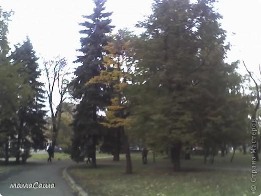 Конец сентября - о наступлении осени видно только по цвету неба. Может наша осень синяя? фото 22