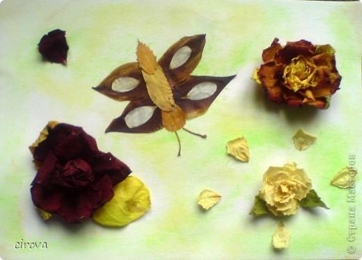 Поделка в школу. Сын (8лет ) вспомнил, что на утро нужна поделка , дома только листья и лепестки роз . Вот, что у нас получилось. Цветы на горячий пистолет собирала я, а бабочку сложил сын. фото 1