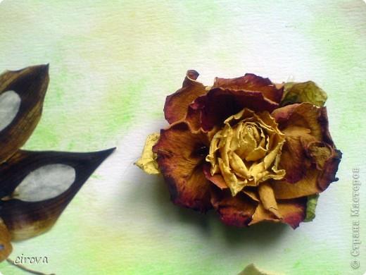 Поделка в школу. Сын (8лет ) вспомнил, что на утро нужна поделка , дома только листья и лепестки роз . Вот, что у нас получилось. Цветы на горячий пистолет собирала я, а бабочку сложил сын. фото 3