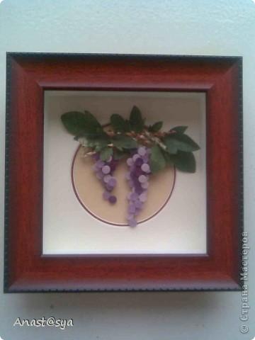 Моя первая картина Виноград