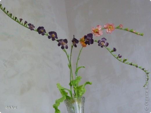 Орхидеи,получился букетик. фото 1