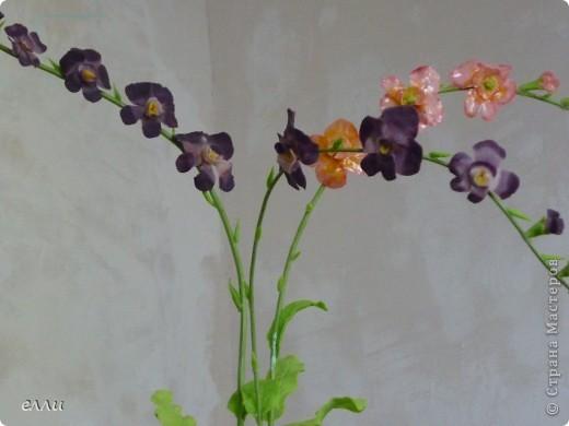 Орхидеи,получился букетик. фото 2
