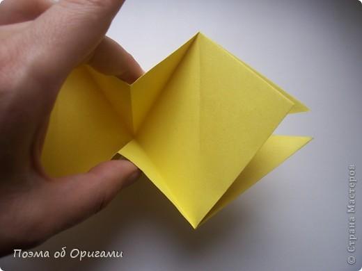 Астры цветут с конца июля до поздней осени. Благодаря подвеске и технике оригами они будут радовать ваш глаз круглый год. фото 11