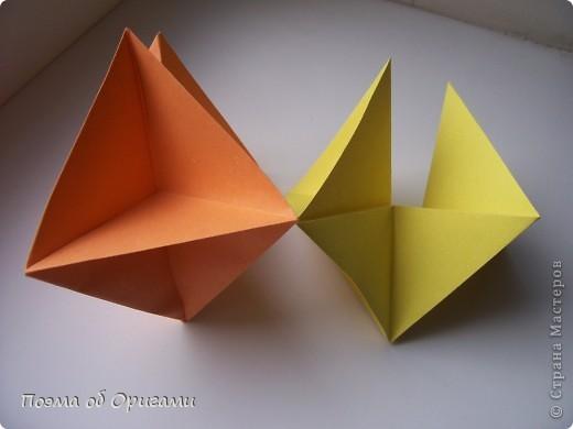 Астры цветут с конца июля до поздней осени. Благодаря подвеске и технике оригами они будут радовать ваш глаз круглый год. фото 14