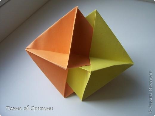 Астры цветут с конца июля до поздней осени. Благодаря подвеске и технике оригами они будут радовать ваш глаз круглый год. фото 15