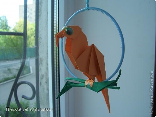 Попугайчики из тропиков уже давно не в новинку.  Из экзотики они превратились в самых настоящих домашних любимцев. Этого оригами-попугая придумал Сергей Афонькин (Санкт-Петербург, Россия). фото 1