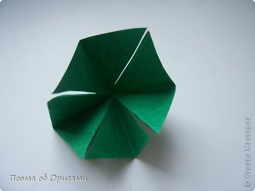Астры цветут с конца июля до поздней осени. Благодаря подвеске и технике оригами они будут радовать ваш глаз круглый год. фото 25