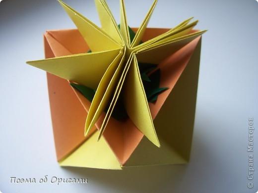Астры цветут с конца июля до поздней осени. Благодаря подвеске и технике оригами они будут радовать ваш глаз круглый год. фото 26