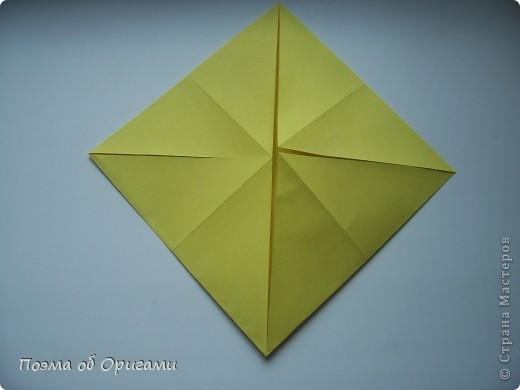 Астры цветут с конца июля до поздней осени. Благодаря подвеске и технике оригами они будут радовать ваш глаз круглый год. фото 2