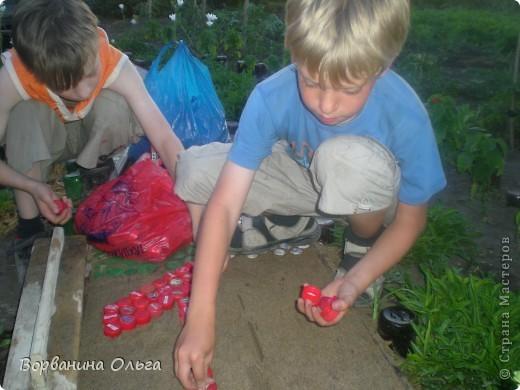 Мозаика Дорожка из пробок от пластиковых бутылок  фото 2