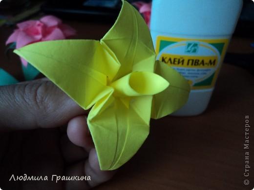 цветы для кусудамы фото 22
