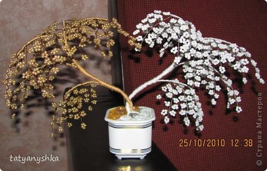 Подарок куме ))))