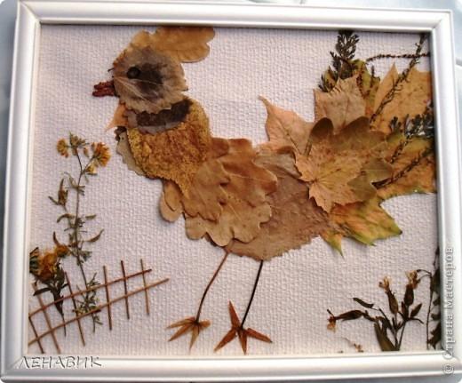 Петушок из осенних листьев выполнен ученицей 2 класса Устиновой Ольгой.  фото 1