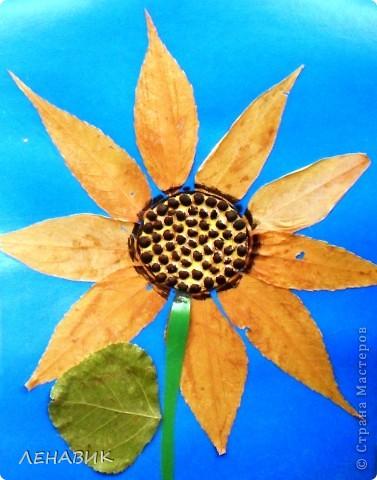 Петушок из осенних листьев выполнен ученицей 2 класса Устиновой Ольгой.  фото 3