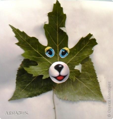 Петушок из осенних листьев выполнен ученицей 2 класса Устиновой Ольгой.  фото 2