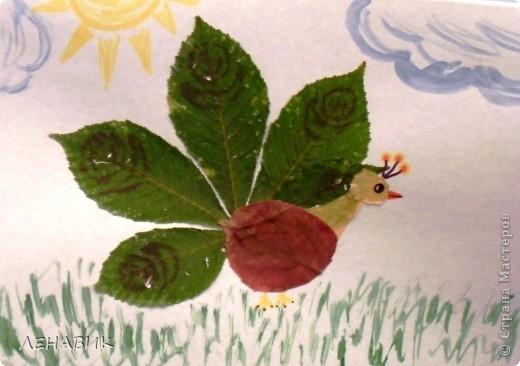 Петушок из осенних листьев выполнен ученицей 2 класса Устиновой Ольгой.  фото 4