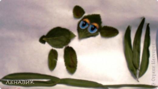 Петушок из осенних листьев выполнен ученицей 2 класса Устиновой Ольгой.  фото 5