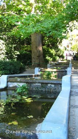Никитский ботанический сад - комплексное научно-исследовательское учреждение, ведущее работы по вопросам плодоводства и ботаники. Основан в 1812 году ученым Христианом Стевеном. фото 9