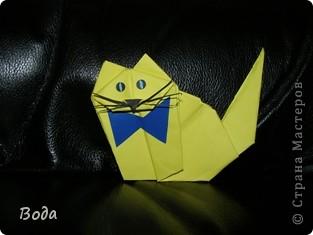 Солидный кошак!)) фото 1