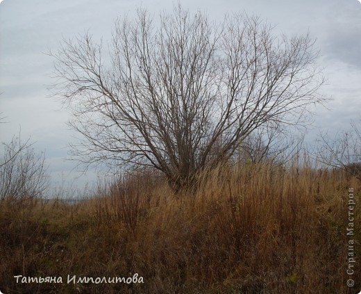 Приглашаю на прогулку по берегу реки Кама фото 10