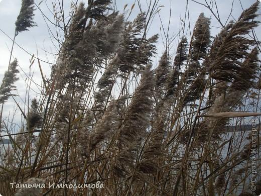 Приглашаю на прогулку по берегу реки Кама фото 13