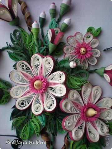 Именно так спотанно назвал эту работу мой муж, а я ничего не стала менять)) Сначала решила показать крупным планом цветы, которые привлекли бабочек)