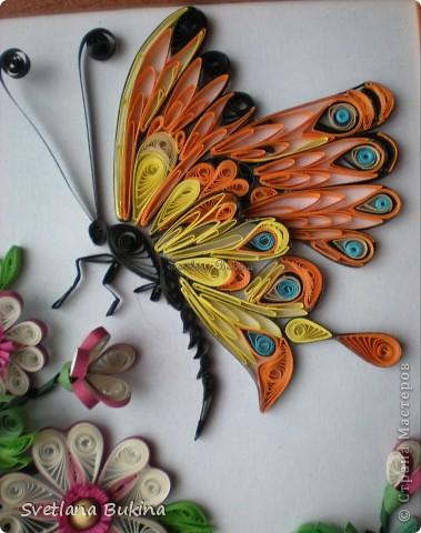 Именно так спотанно назвал эту работу мой муж, а я ничего не стала менять)) Сначала решила показать крупным планом цветы, которые привлекли бабочек) фото 2