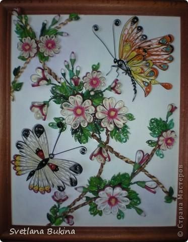 Именно так спотанно назвал эту работу мой муж, а я ничего не стала менять)) Сначала решила показать крупным планом цветы, которые привлекли бабочек) фото 3