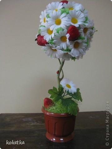 Ромашковое деревце фото 1