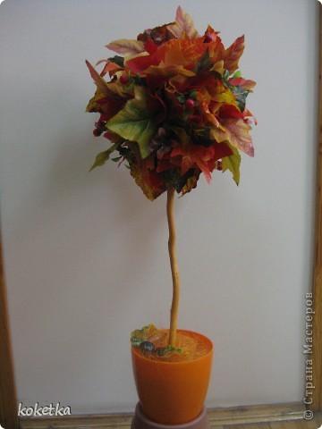 Яркие краски осени фото 4