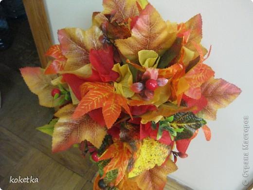 Яркие краски осени фото 2