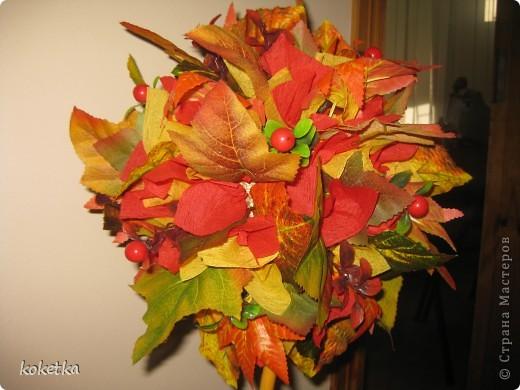 Яркие краски осени фото 1