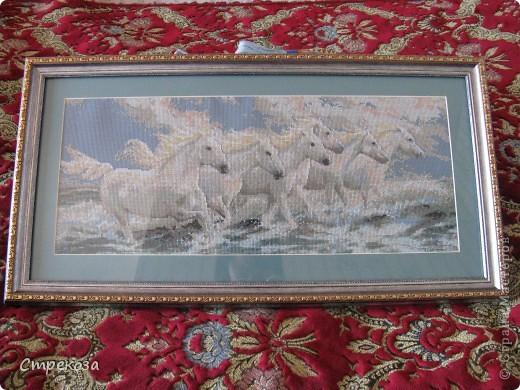"""Почему """"мечта""""? Рассвет. Восход солнца. 6 белых красивых лошадей бегут на встречу судьбе..."""
