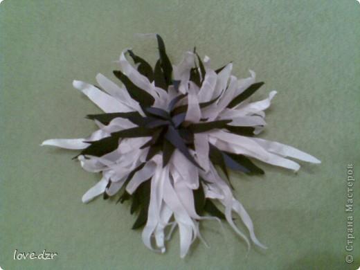 Хризантема и лилия фото 1
