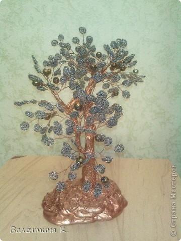 Мои знакомые сказали, что это - дерево счастья.  фото 2