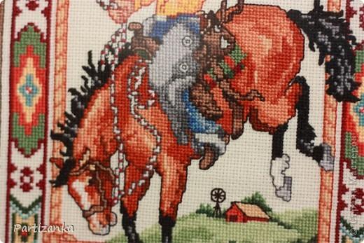 Ковбой на лошади фото 2