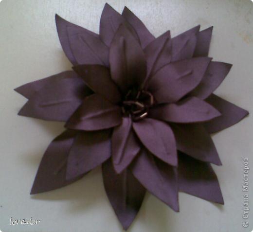 Хризантема и лилия фото 2