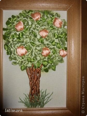 Деревья счастья. фото 2