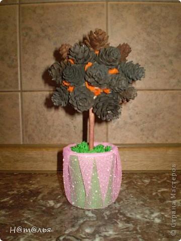 Вот такое деревце сделали с дочей  из шишек... фото 1