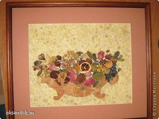 Разнообразие флористических катрин. фото 4